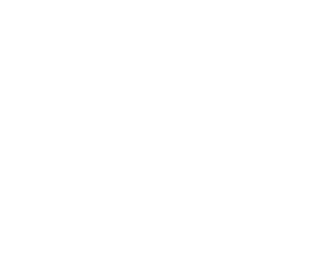 Avalon Integrations - Epson White Logo