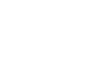 Newcastle Systems White Logo